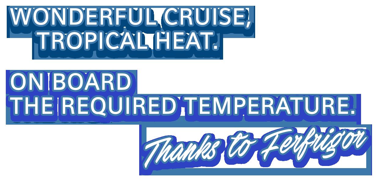 cruise-assistance-ferfrigor-slider-2-text-2